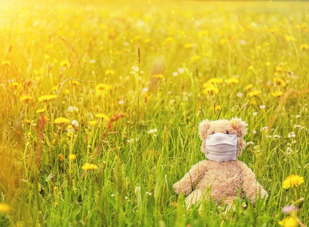 Teddybär mit Maske
